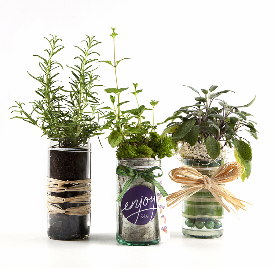 Christine Cox; Seattle Photographer; Product photography; Jarbiz; glass jars; gift sets; plants