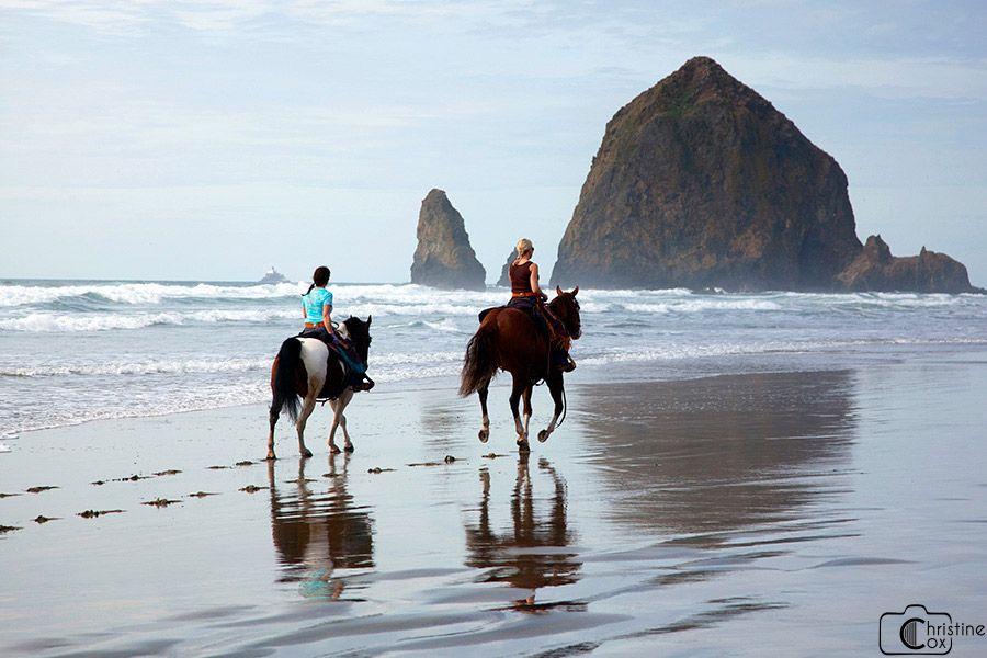 Horseback Riding Myrtle Beach